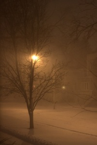 Streetlight tree and snow